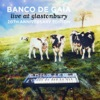 BancoDeGaia-LiveAtGlastonbury.jpg