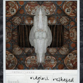 Enuui – Nāginī Reshaped (Self-released)