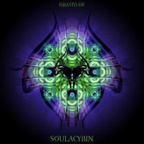 Soulacybin – Gratitude (Merkaba Music)