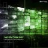Harold Sleeper - Momentary Permanence