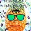 HyperbolicHeadspace-BluntBustinPinealPin