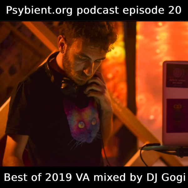 psybient.org podcast ep20 – DJ Gogi – 2019 VAs Picks Mix