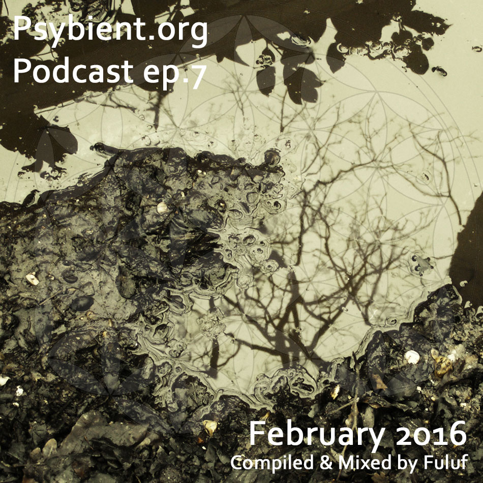 psybient.org – podcast – episode 7 with Fuluf